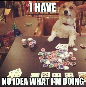 funny-no-idea-doing-dog-playing-poker-pics