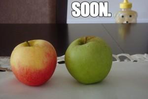 rosh-hashanah-soon