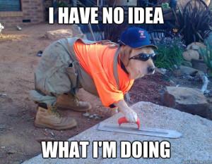 construction-dog